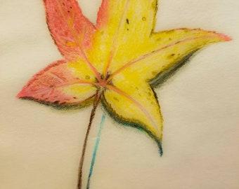 Fall Leaf Print From 5 x 7 or 8 1/2 × 11
