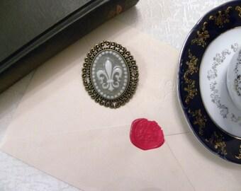 Victorian Fleur de Lis Grey Cameo Brooch (Bronze) - French (Glossy)