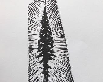Redwood tree. Original woodcut print. Wall Art