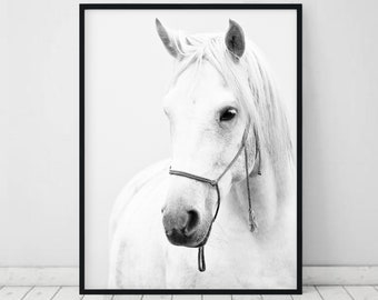 Horse Printable Horse Photography Black And White Wild Horse Photo Horse Print White Horse print Wilderness Print Equestrian Modern Wall Art