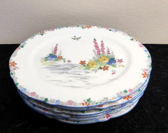 Set of 6 Paragon Foxglove Star small oval plates – original from the 1930s