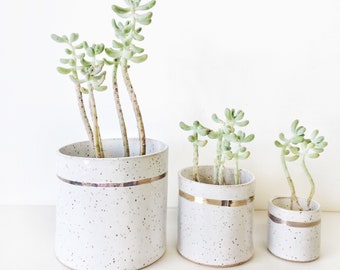 In stock ready to ship Planter Terrarium gift garden home decor speckled white minimalist Handmade ceramic succulent garden with 22k gold st