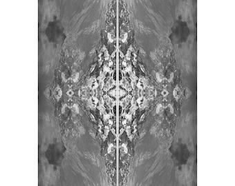 PLEIADIAN.large framed print