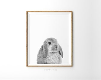 Bunny print - Minimalist nursery - Monochrome nursery  - black and white photo - Nursery animal print - Nursery decor - Nursery animals