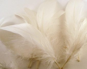 Feathers Goose Natural White 12 pack hat feathers smudge feathers