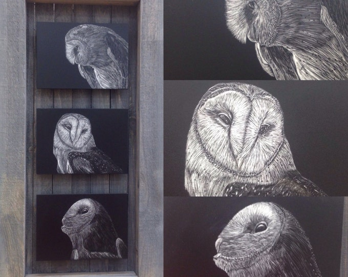 Hoo's who? Barn owl scratchboards in a one of a kind handmade rustic frame