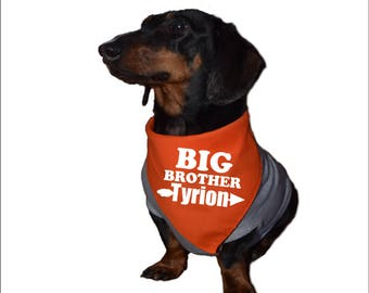 dog baby announcement, big brother dog bandana, big brother dog, personalized pet bandana, big brother announcement shirt, dog bandana