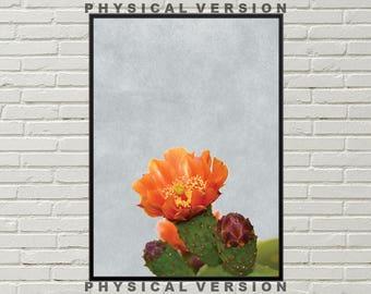 CACTUS FLOWER PRINT, desert physical print, arizona wall art, southwestern decor, desert framed photo, cacti art print, living room wall art