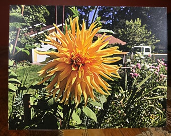 Wild Yellow Flower Notecard