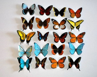 3D Butterfly Magnets Insects Refrigerator Magnets Set of 20 Handmade Home Decor Gifts