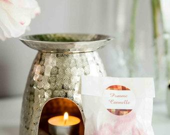 POMME CANNELLE - sachet de 3 fondants de parfum