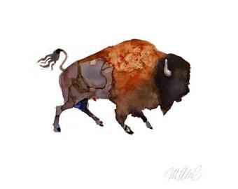 Buffalo Giclee Print Watercolor Wall Decor Art Prints Watercolor Art Animal paintings Animal Prints
