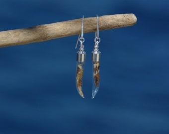 Boucles d'oreilles mini coquillages ~ cornes de verre ~ mer,  été ~ mini-coquillages ~ crochets anti allergie, argent ~ fait main en France