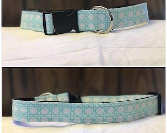 Light Blue & White Collar