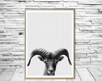 Goat Print Farm Animal Printable Wall Art Black and White Animal Print Digital Download Nursery Animal Print Modern Minimalist Wall Art