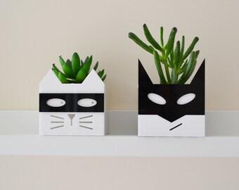 Super-villain cat or Superhero planter
