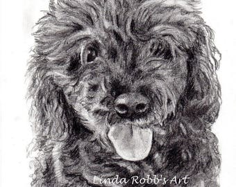Custom 5x7 Pet Portrait Graphite Pencil