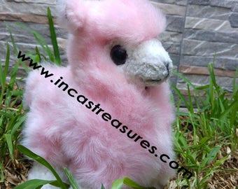 Alpaca Stuffed Alpaca Sugar FREE SHIPPING Worldwide