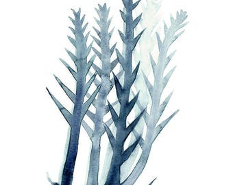 Watercolour Seaweed Art, Blue Seaweed Print, Marine Watercolour, Beach house Decor, Blue and White Art, Made in Australia