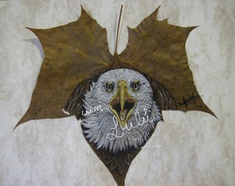gorgeous, eagle, pastel, pencil, technique, on real, leafe, printing