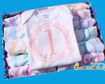 Girls 12 Month Pastel Baby Milestone Bodysuit Onesie Set, Birth Onesie, Monthly Birthday Gift, Anniversary, New Mom Gifts, Baby Shower Set
