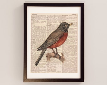 Vintage Robin Dictionary Art Print - Songbird Art - Print on Vintage Dictionary Paper - Bird Print, American Robin, Red Breasted