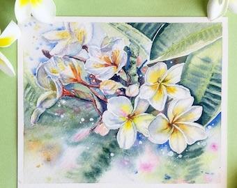 Original. Plumeria flowers watercolor fine art