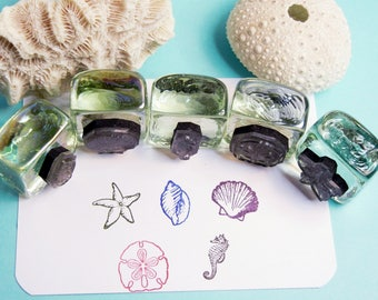 Tiny Shell Ocean Rubber Stamp Set - Scallop, Shell, Seahorse, Sand Dollar, Starfish - Set of 5 - Handmade by Blossom Stamps
