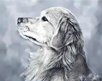 Golden Retriever Drawing redone, note cards