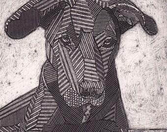 Black Labrador Retriever Pitbull Mix, Original Black and White Collograph, Black Lab, Dog Print - Bo 4