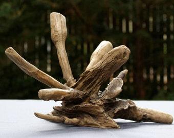 Driftwood Art Work, Driftwood Home Decor, Driftwood Art