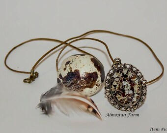 Quail Eggshell Necklace #108