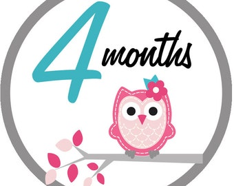 Retro owls - 005 - Baby girl owl retro monthly iron on sticker decal transfers baby shower pink blue gray