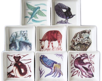 Animal Artwork Ceramic Dishes, Puma Tamandua Indri Okapi Milk Frog Cuttlefish Riflebird Flying Fish, Many Uses - Tableware, Jewellery etc