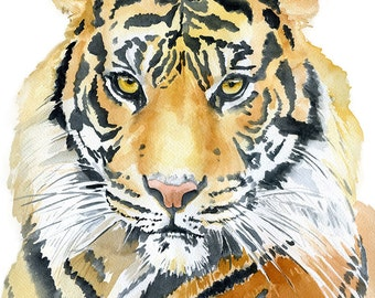 Tiger Watercolor Painting - 8 x 10 - Giclee Fine Art Print - African Animal - Animal Painting - 8.5 x 11