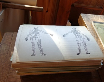 Vintage Medical patient examination cards (blank) from 1940s