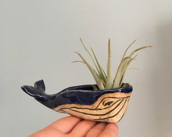 MTO Handmade, Hand-sculpted Large Blue Whale Ceramic Bowl Sculpture Air Planter Decorative Jewelry Holder