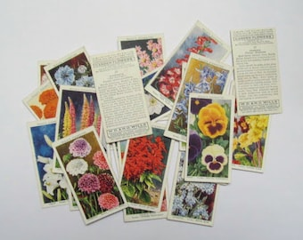 Garden Flowers Wills Cigarette cards: pack of 23 cards from 1939. Collectible ephemera or for use in craft, scrapbook, collage OT692