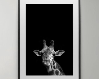 Giraffe Print, Animal Photography, African Safari Animal Prints, Black and White Animal, Giraffe Wall Art, Instant Download, Home decor.