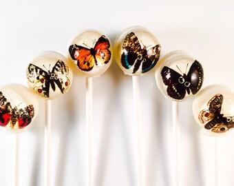 6 Butterfly Hard Candy Lollipops