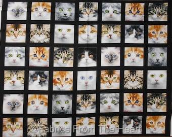 "Adorable Kitty Cats Kittens Cute 5"" Blocks BY YARDS Elizabeth's Studio Fabric"