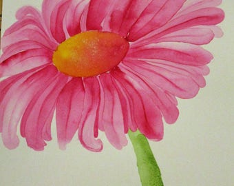 Pink Daisy Watercolor Study