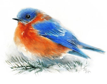 Bluebird  - Giclee Print of watercolor painting. Art Print. Nature or Bird Illustration, Blue and Orange.