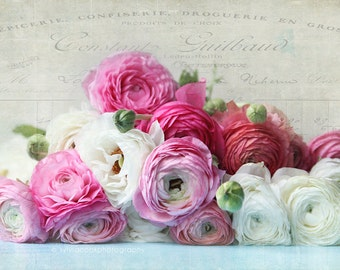 Ranunculus photo,shabby chic home decor, fine art print, romantic, pink, white, green, floral photography, still life
