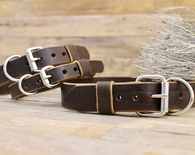 Dog collar, FREE ID TAG, Leather collar, Dog gift, Personalised gift, Handmade leather collar, Cocoa collar, Classic collar.