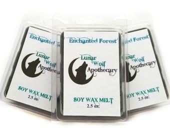 Enchanted Forest Wax Melt / Clamshell Wax Melt / Wax Shot Melt / Soy Wax Melt / Stocking Stuffers / Christmas Gift / Gift for Her / Gift