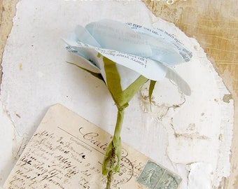 2nd Wedding Anniversary Pale Blue Poem Flower Gift by Cotton Bird Designs