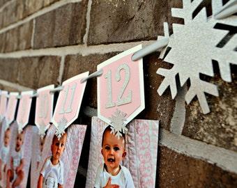 Winter Onederland Photo Banner. Winter Wonderland Photo Banner. 12 Month Photo Banner. Frozen Inspired Decor. Winter Onederland Decor.
