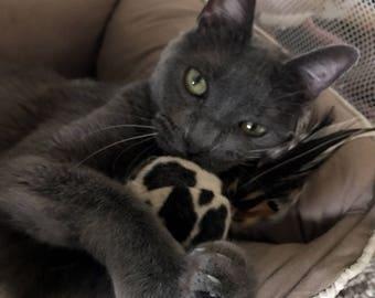 Cat Toy - Organic Catnip - Minky Ball - Kitten Toy - Kitten Ball - Cat Toy - Cat Ball w/Feather