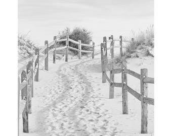 Black and White Beach Photography, Coastal Wall Art, Sand Dune Art, Beach Path Photo, Beach Art, Blue and Beige Seashore Decor, Island Beach